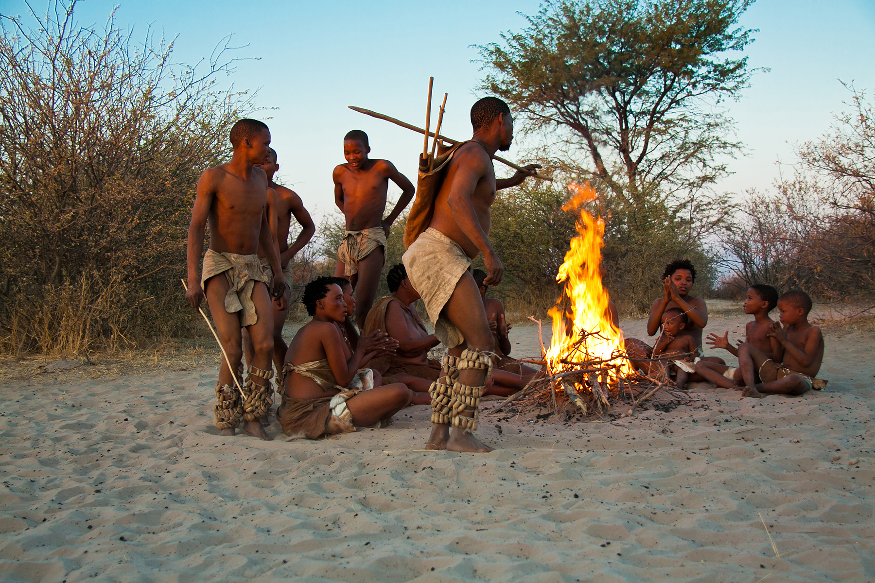 Grassland Bushman Lodge (Central Kalahari GR, Botswana) is a little world of wonders